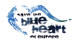 Logo blue heart
